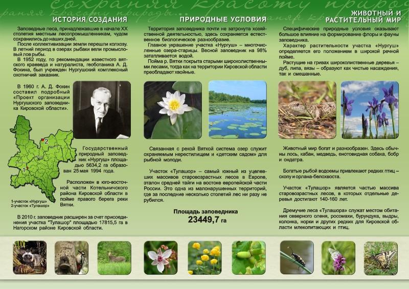 Буклет Нургуш 2011