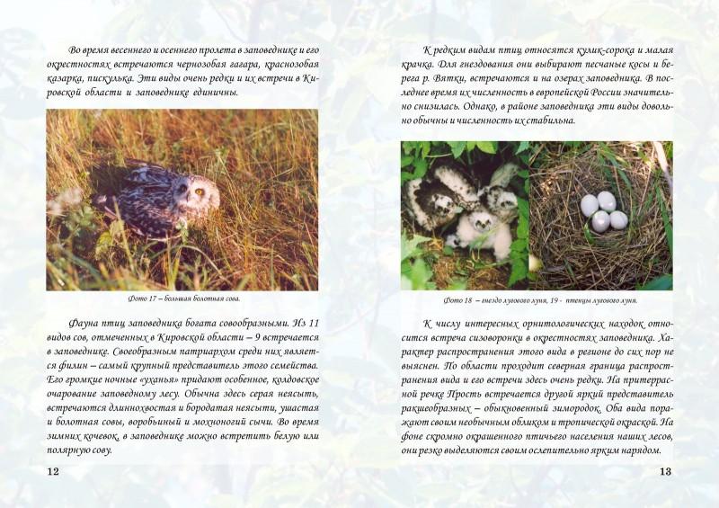 Буклет Птицы заповедника Нургуш