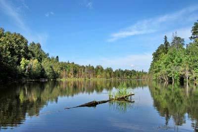 Озеро Бабье. Фото Н. Н. Ходырева