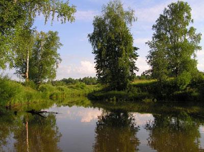 р. Прость. Фото Л. Г. Целищевой