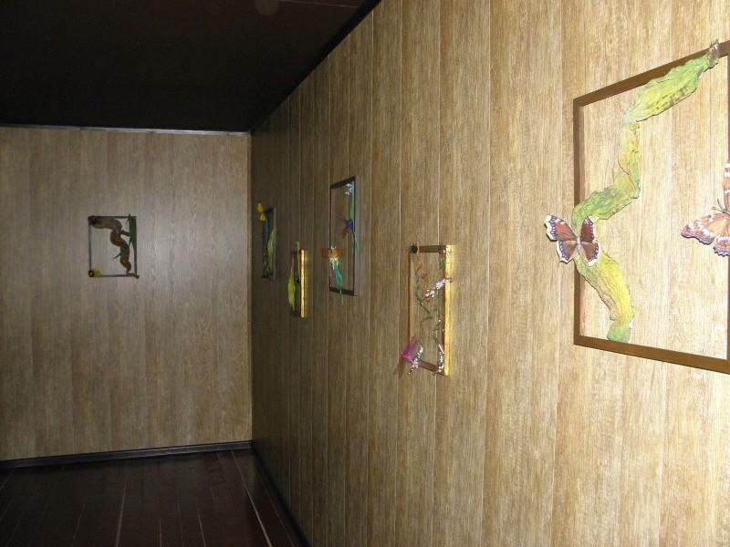 Коллажи с насекомыми - украшение экспозиции. Фото Целищевой Л.Г.