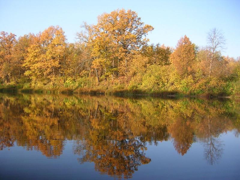 Золотая осень. Фото Шубина С. Е.