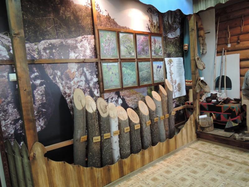Фрагмент музейной экспозиции в Офисном здании НП Башкирия. Фото Тарасовой Е. М.