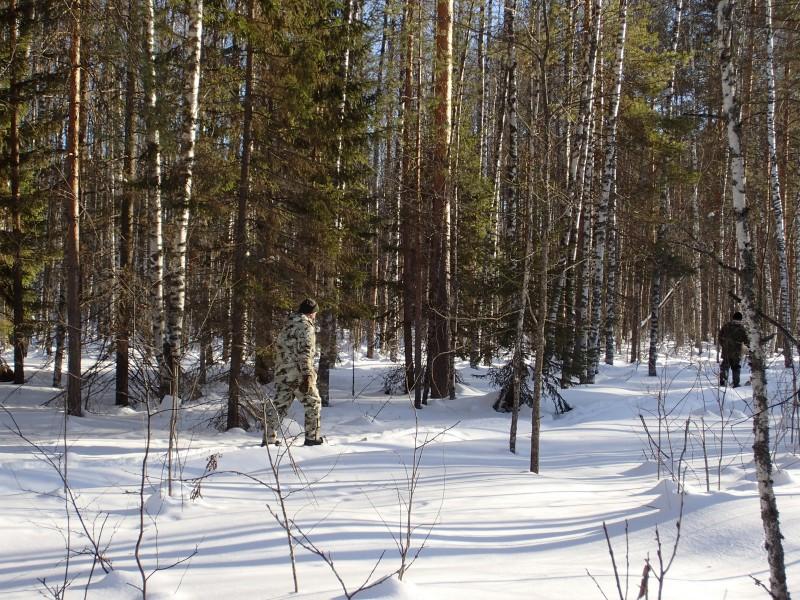 Зимний маршрутный учет в охранной зоне участка «Нургуш». Фото С.Е. Шубина