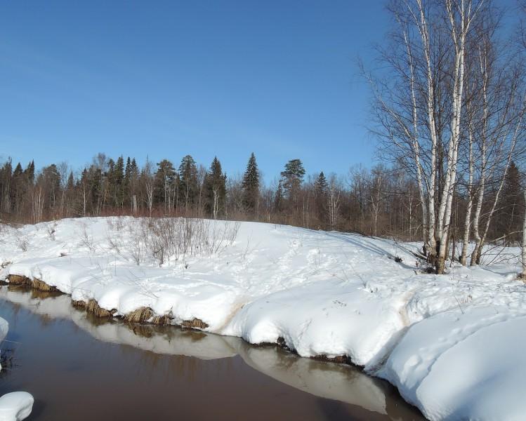 Притеррасная река Прость - граница заповедника. Первый день весны. Фото Е.М.Тарасовой