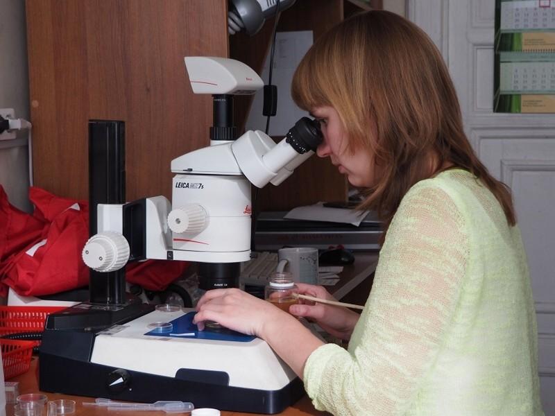 Евгения Беккер изучает пробы ветвистоусых ракообразных_hf