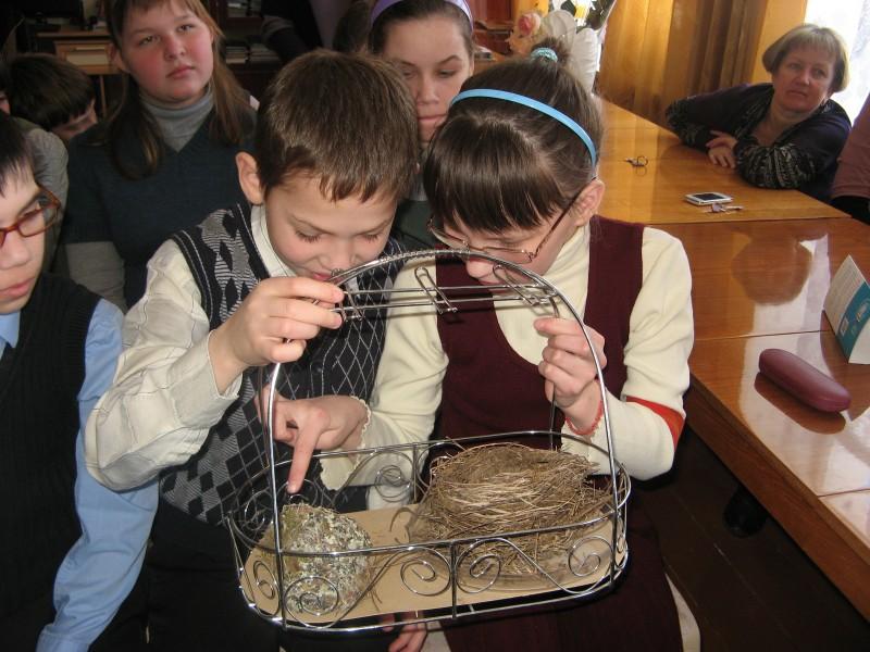 Изучение гнезд певчего дрозда и зяблика