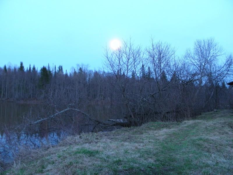 Вечер. Луна. Фото Л.Г. Целищевой