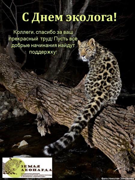 С Днем эколога_Земля леопарда_2015