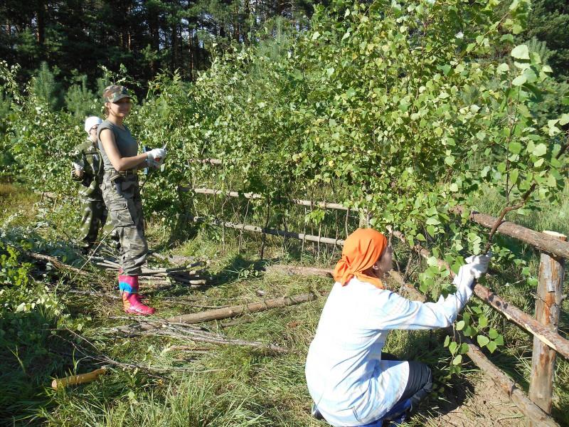 Волонтеры за плетением изгороди. Фото Ю.С. Рогожкиной