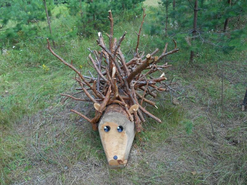 Ёжик спрятался в лесу. Фото Ю.С. Рогожкиной