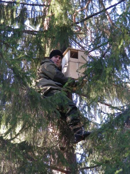 Первый совятник установлен. Фото С. В. Кондруховой