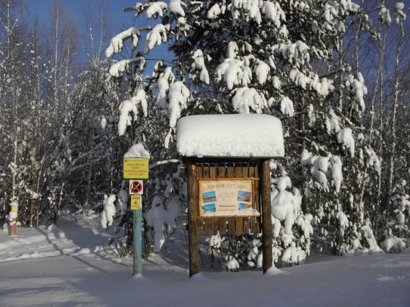 Лыжный маршрут в Нургуше. Фото Л.Г. Целищевой.