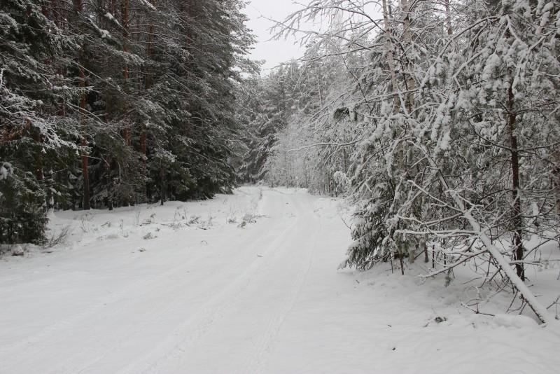 Снежная сказка Нургуша. Фото Е.В. Князевой