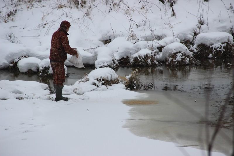 Сотрудники подкармливают лебедя. Фото Е.В. Князевой