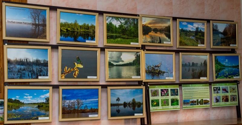 Выставка Голубые озера. Фото Е.П. Кондруховой