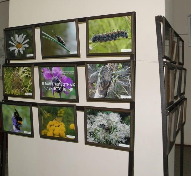Выставка фотографий заповедника. Фото Л.Г. Целищевой