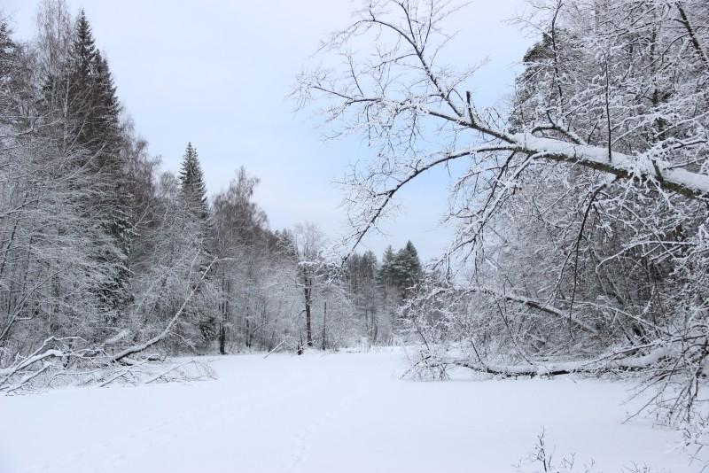 Зимний пейзаж Нургуша. Фото Е.В. Князевой