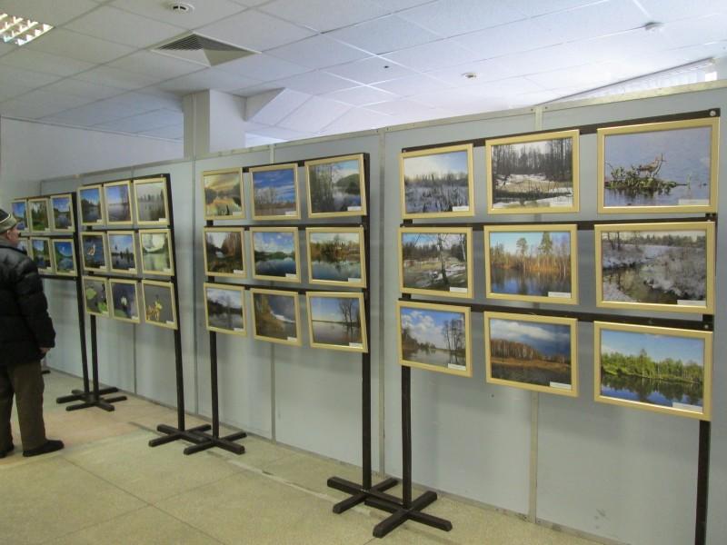 Фотоработы сотрудников заповедника Нургуш на выставке. Фото Ю. С. Рогожкиной