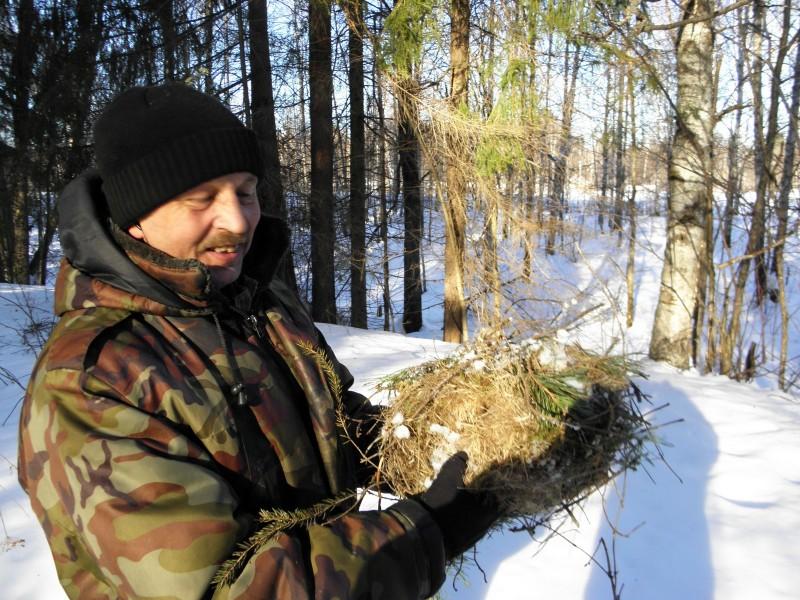 Государственный инспектор С.И. Ануфриев с гнездом белки. Фото Л.Г. Целищевой