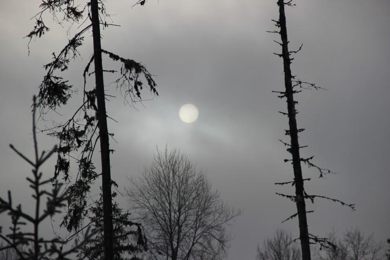 Полнолуние в Тулашоре. Фото Е. В. Князевой