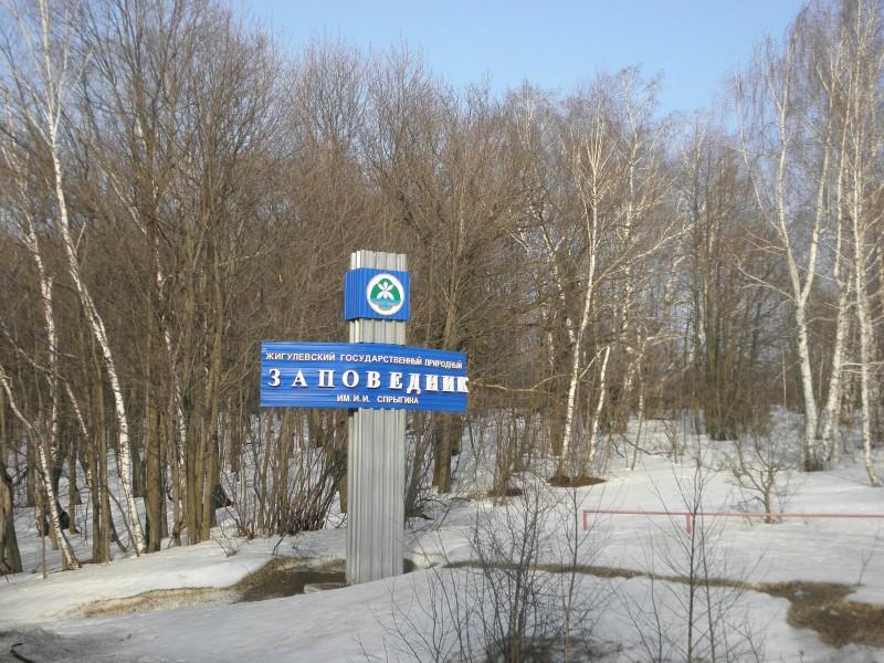 Жигулёвский государственный природный заповедник. Фото Л. Г. Целищевой