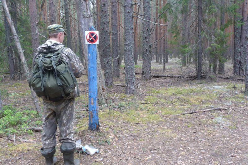 Информационный знак в охранной зоне. Фото М. В. Кузьминых