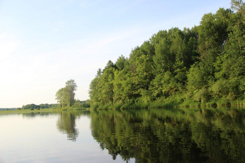 Озеро Старица. Фото Е. В. Князевой