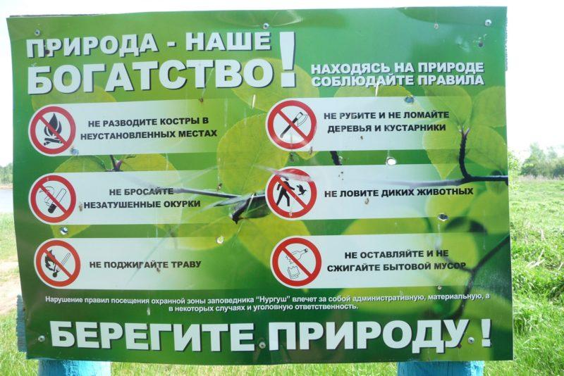 Поврежденный информационный щит. Фото М. Ю. Кузьминых