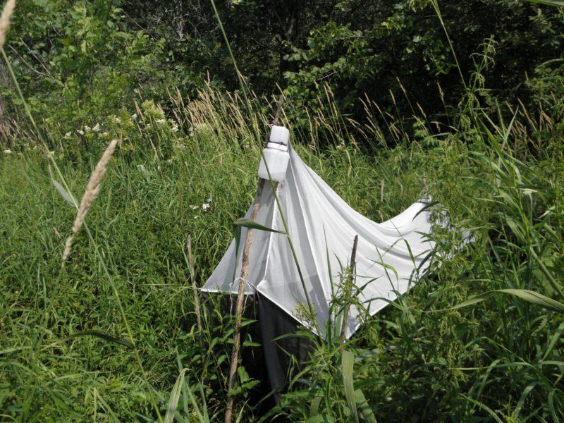 Ловушка Малеза в заповеднике. Фото Л. Г. Целищевой