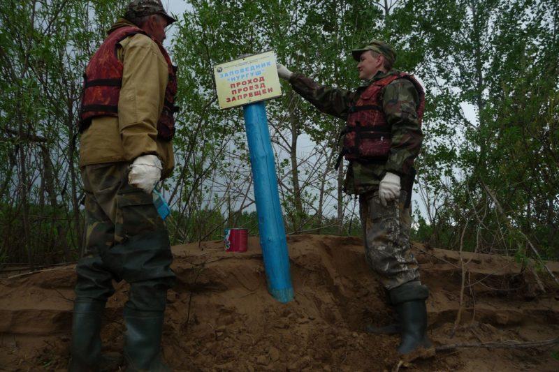 Высокое половодье повредило аншлаги, установленные на границе заповедника. Фото М. В. Кузьминых