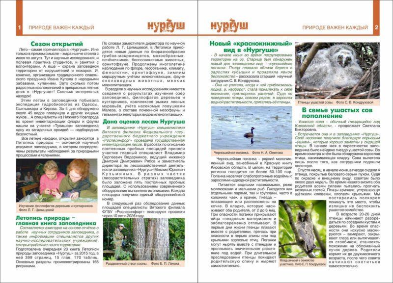 1-2 страницы