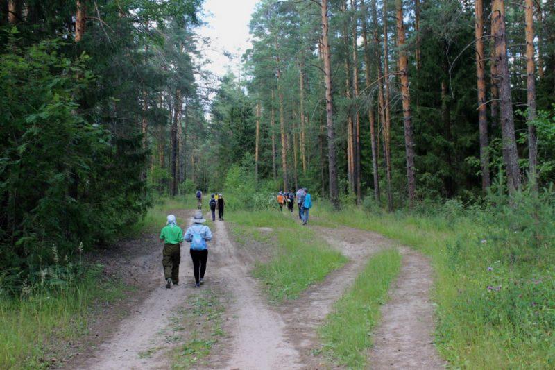 Пешком по заповедным тропам. Фото Л. К. Трушечкина