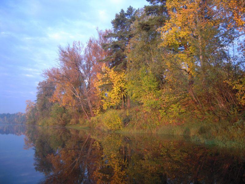 Заповедник осенью. Фото Е. М. Тарасовой