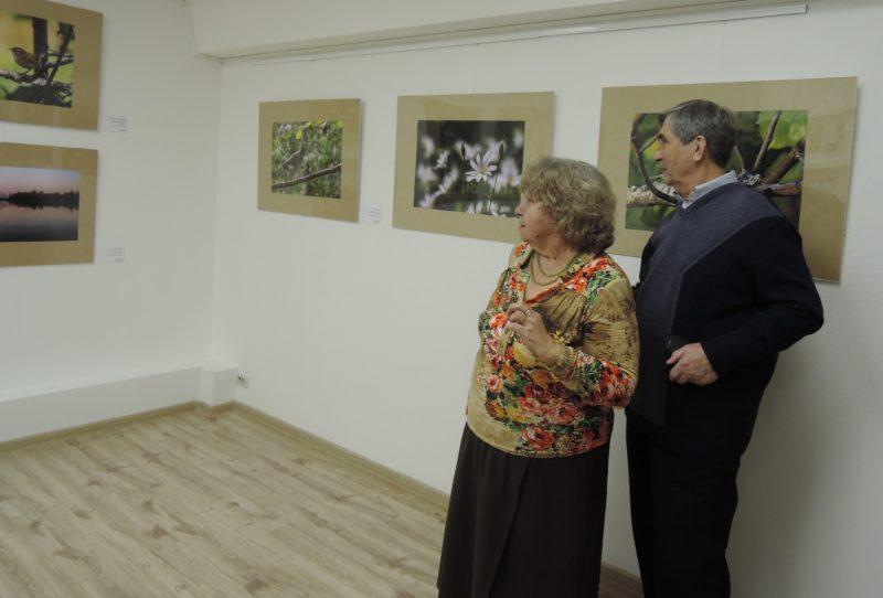 Первые посетители выставки. Фото Е. М. Тарасовой