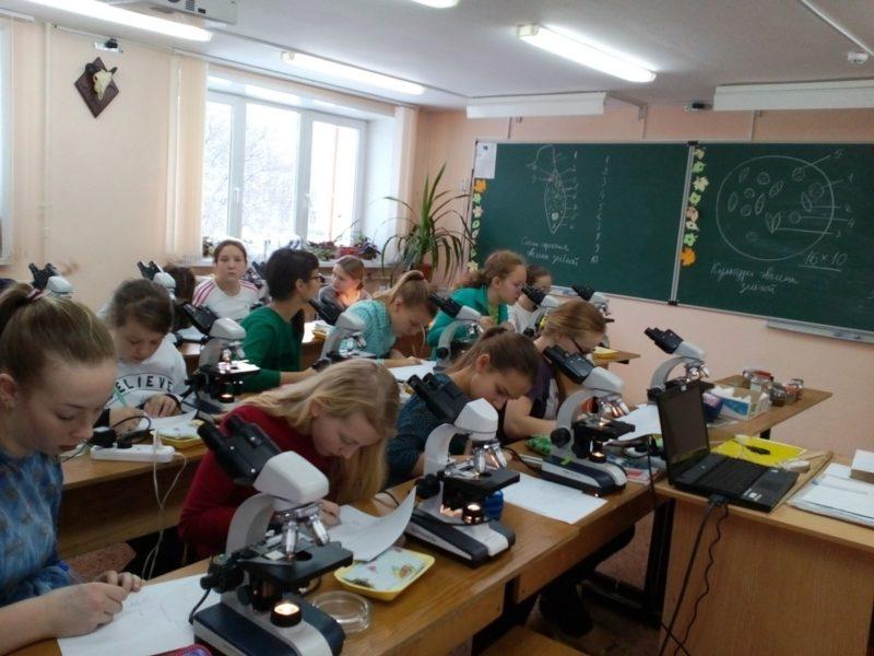 Ученики Лицея г. Кирово-Чепецка на занятии по одноклеточным. Фото Л. Г. Целищевой