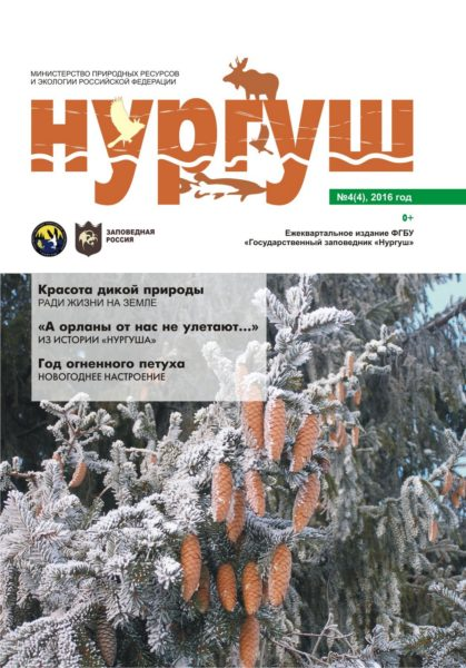 Обложка страница