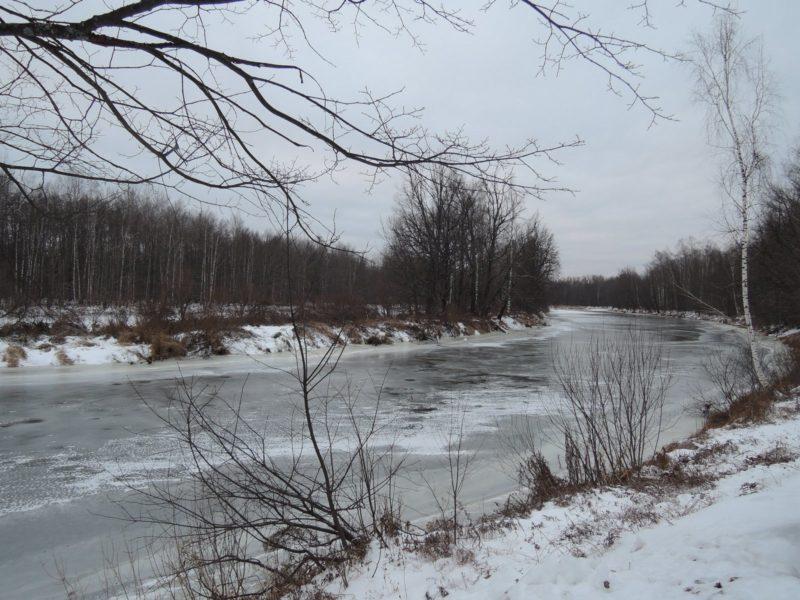 Река Большая Кокшага в заповеднике. Фото Е. М.Тарасовой