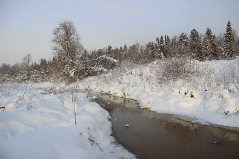 Река Прость. Фото Е. В. Князева