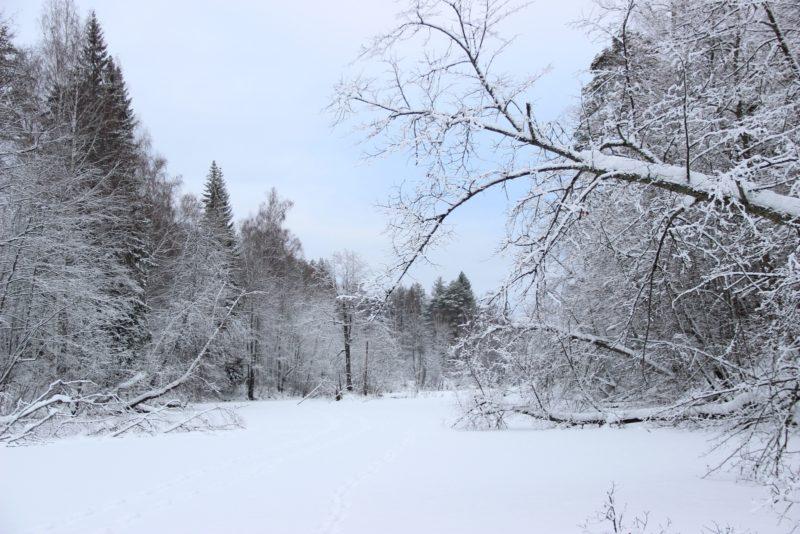 Зимний пейзаж Нургуша. Фото Е. В. Князевой