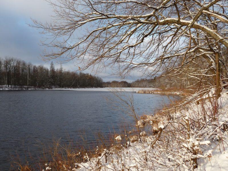 Заповедник Нургуш. Озеро Нургуш. 2012. Фото П. В. Терехова