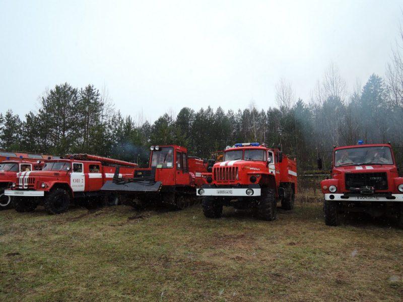Ученья по тушению лесных пожаров. Фото Е. М. Тарасовой