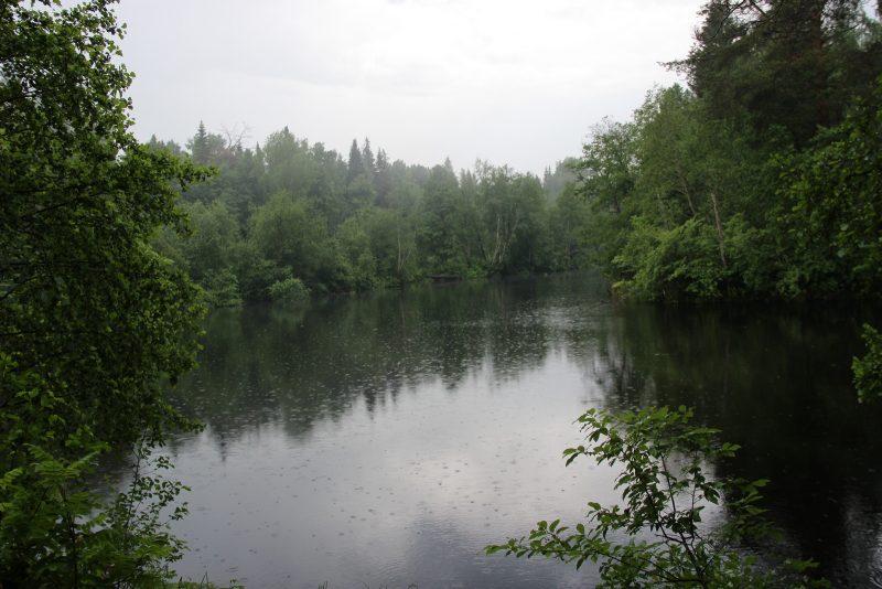 Дождь. р. Прость. Фото Е. В. Князевой