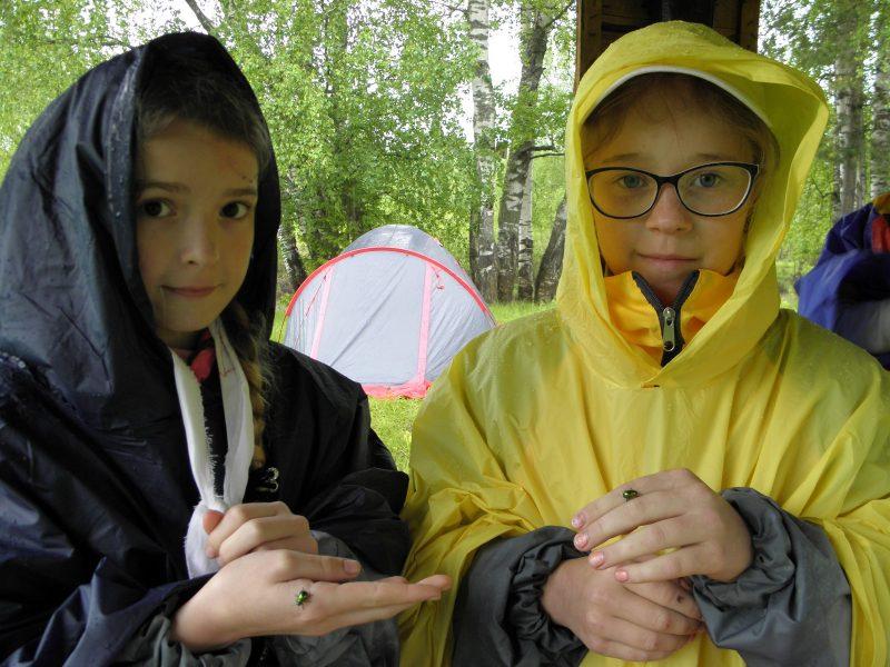 Учащиеся ЛЕН г. Кирова с листоедами. Фото Л.Г. Целищевой