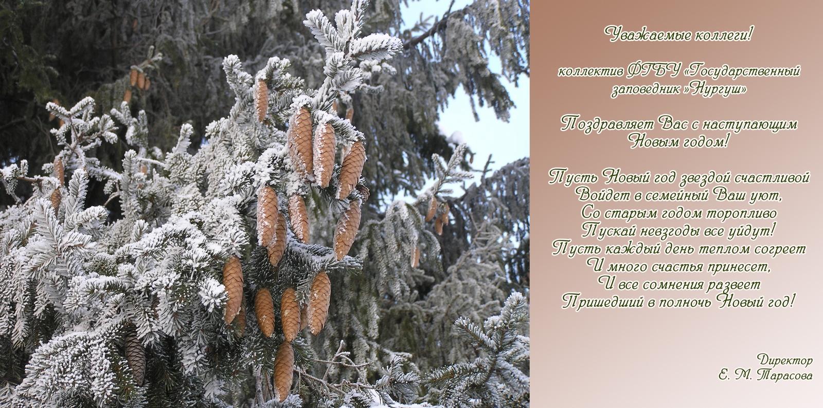 Новогоднее поздравление заповеднику