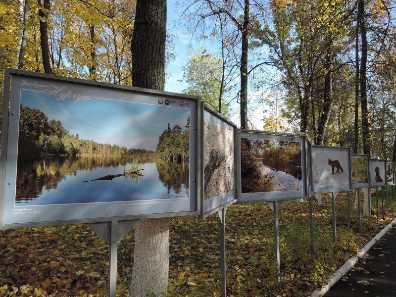 """Выставка """"Заповедная земля Нургуша"""" в парке Аполло. Фото Е.М. Тарасовой"""