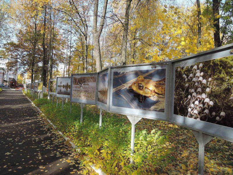 Выставка в парке Аполло. Фото Е.М. Тарасовой