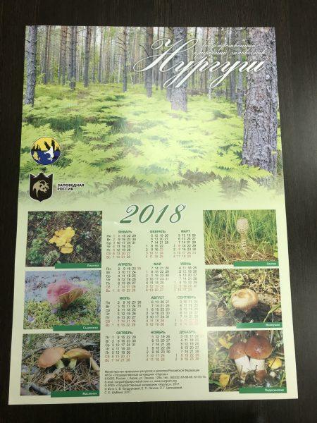 Настенный календарь 2018. Фото И.С. Пенкиной