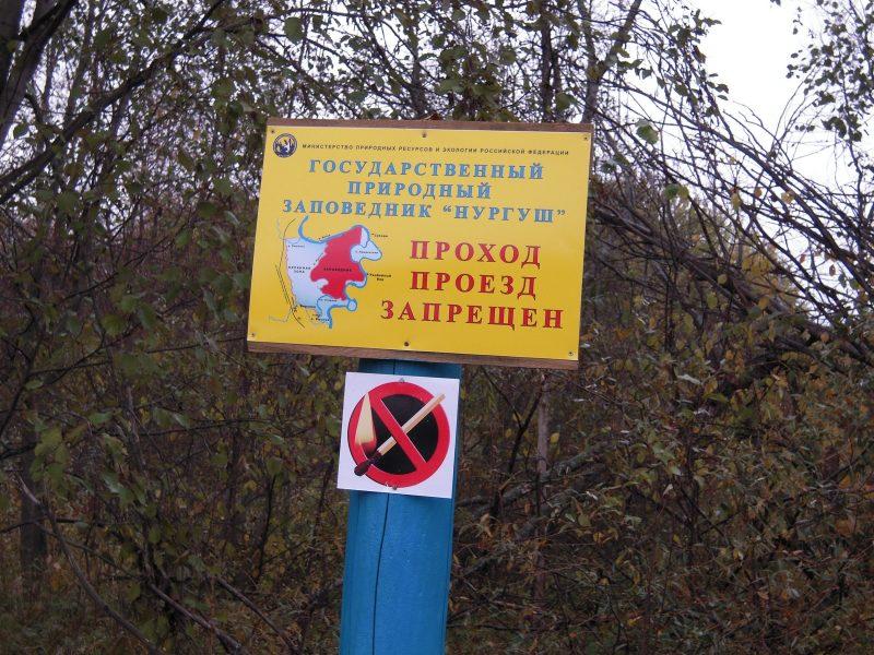 Аншлаг на границе заповедника. Фото Е. М. Тарасовой