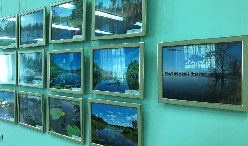 Выставка Озера. Фото И.С. Пенкиной